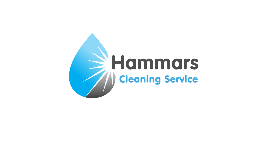 Hammars Cleaning Logo / Brand Design