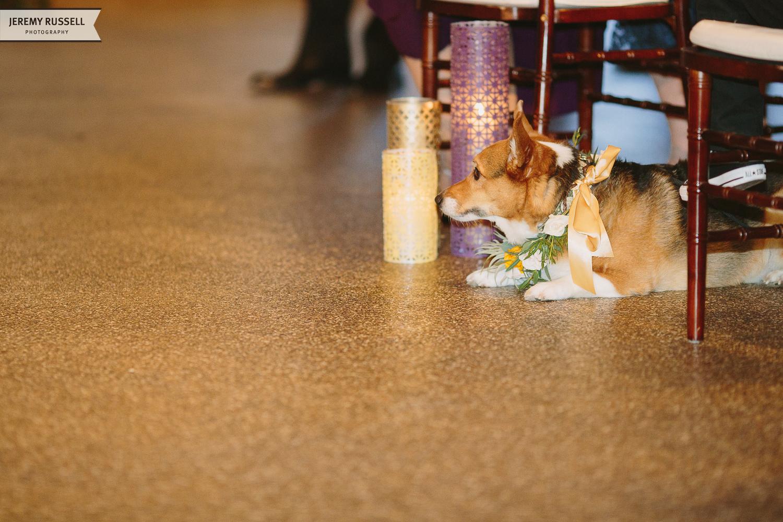 Jeremy-Russell-1312-Venue-Wedding-Asheville-31.jpg