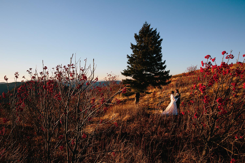 jeremy-russell-asheville-elopement-mountain-16-07.jpg