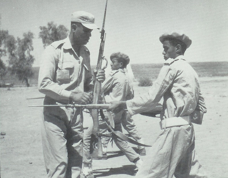 Egyptian trainer and YAR recruit, date unknown (Wikipedia.fr)