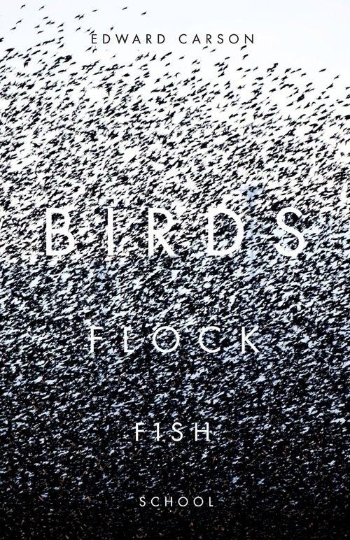 birds-flock-fish-school.jpg