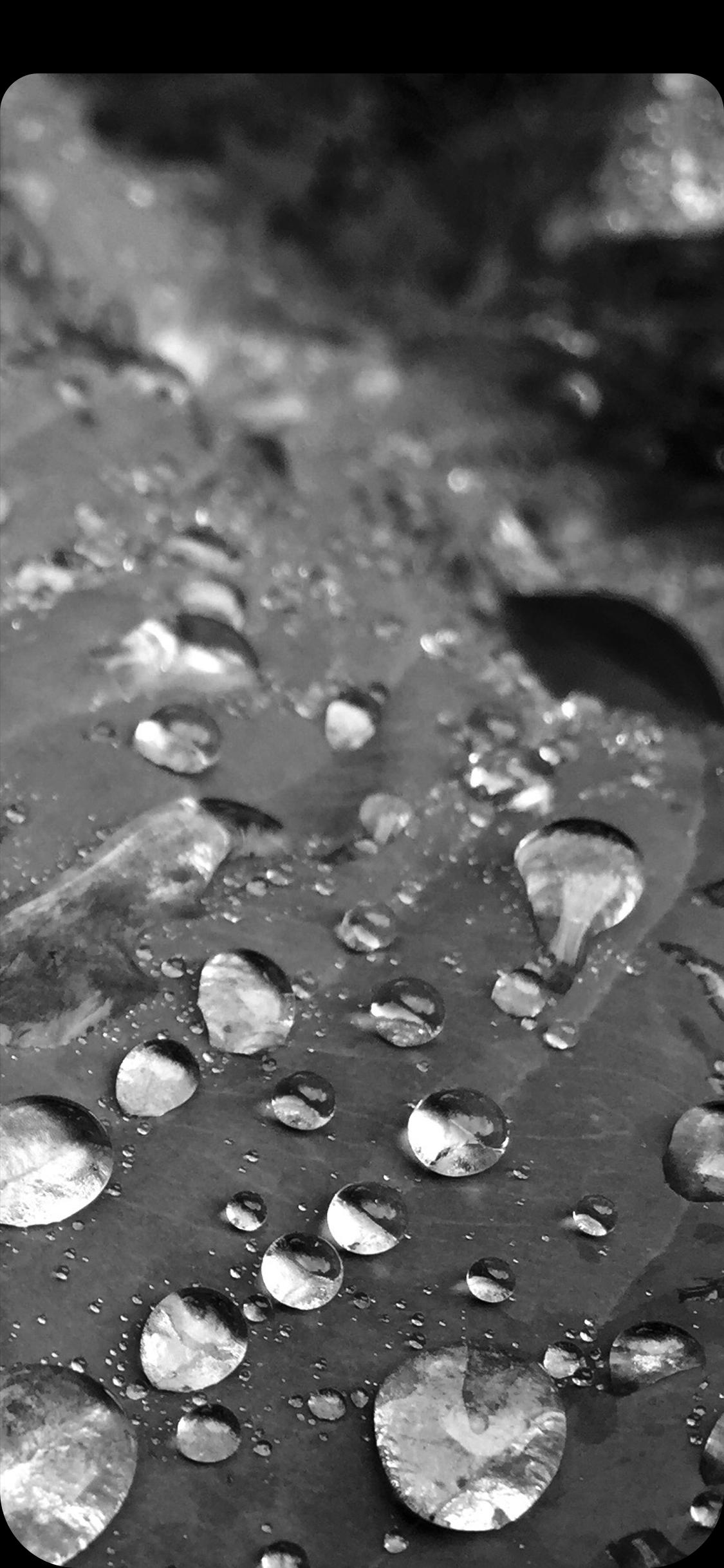 geirwerner-Droplet.jpg