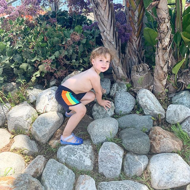Little climber. 🧗🏼♂️ #rockclimbing #arthursantics