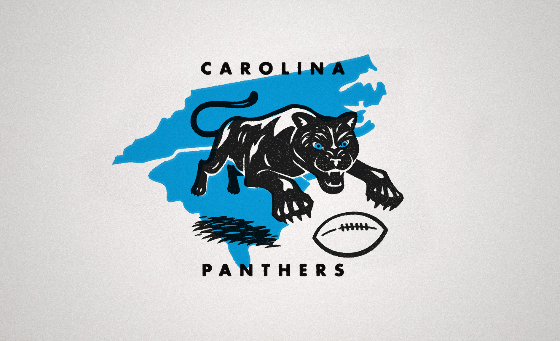 fabcd321 Daydream Rebrand: Carolina Panthers Hidden History — the Design ...