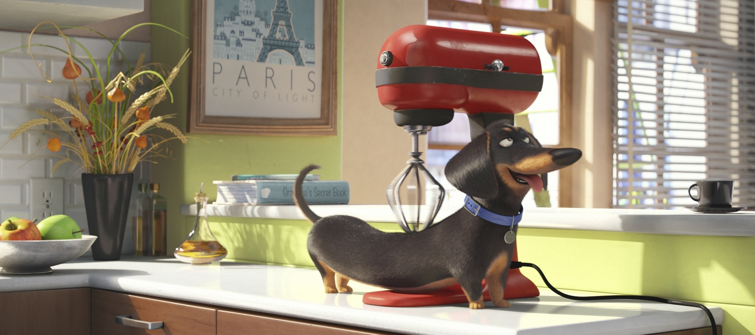 """Buddy (HANNIBAL BURESS) is a sarcastic dachshund in Illumination Entertainment and Universal Pictures' """"The Secret Life of Pets,"""" a comedy about the lives our pets lead after we leave for work or school each day."""