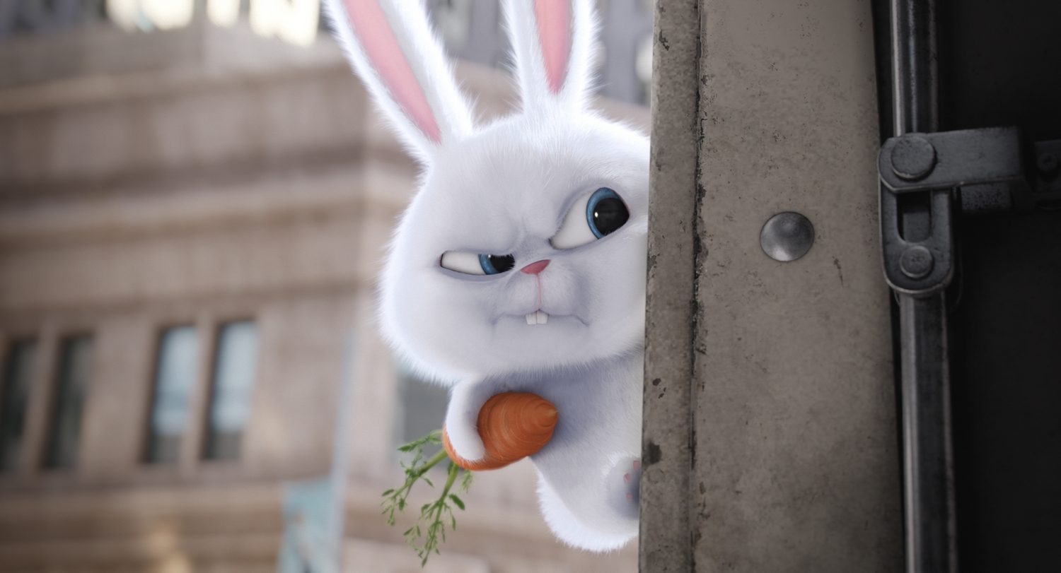 """An adorable and deranged bunny, Snowball (KEVIN HART) is the leader of the Flushed Pets in Illumination Entertainment and Universal Pictures� """"The Secret Life of Pets,"""" a comedy about the lives our pets lead after we leave for work or school each day."""
