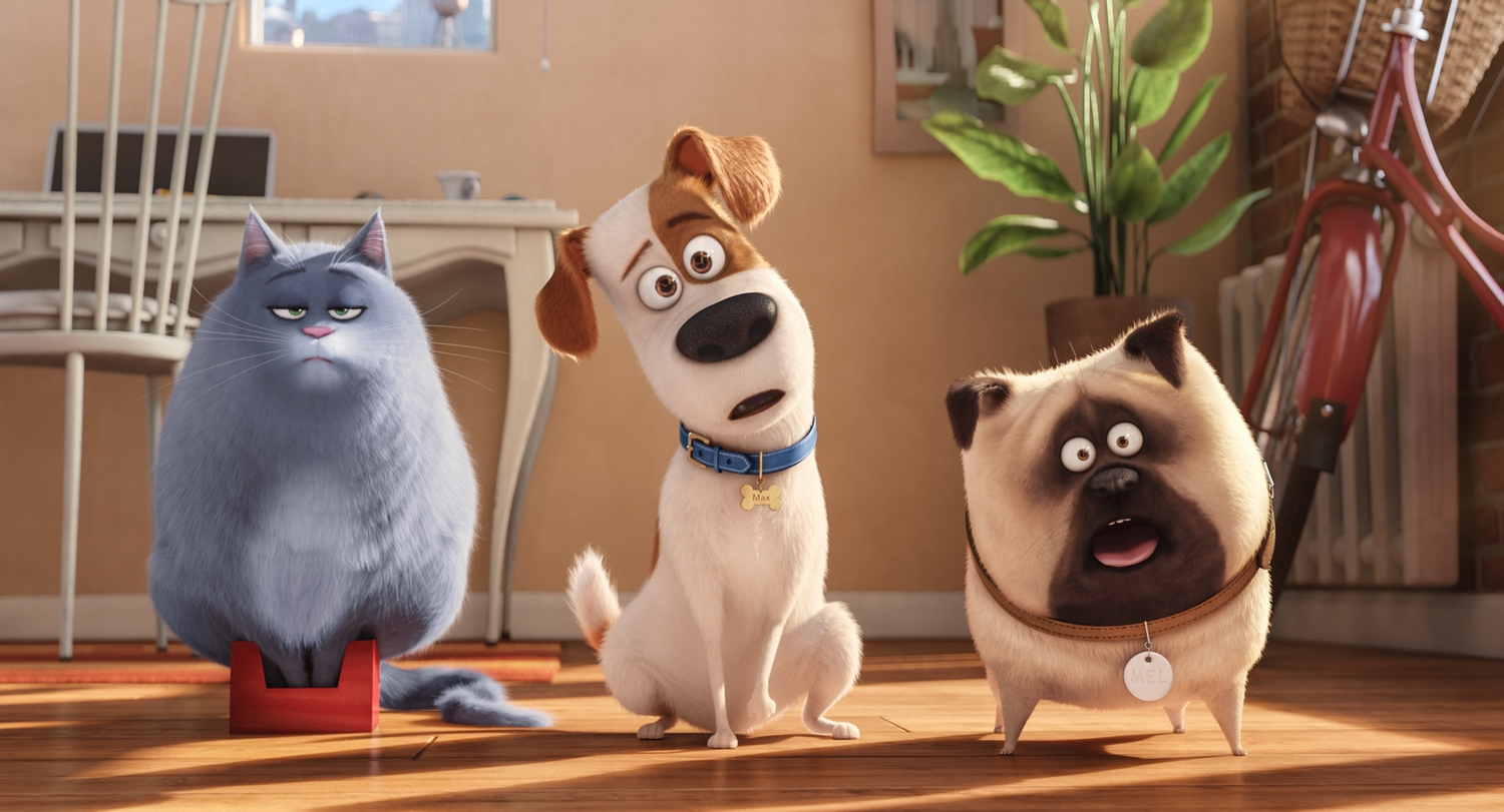 """(L to R) Fat cat Chloe (LAKE BELL), pampered terrier mix Max (LOUIS C.K.), and excitable pug Mel (BOBBY MOYNIHAN) in Illumination Entertainment and Universal Pictures� """"The Secret Life of Pets,"""" a comedy about the lives our pets lead after we leave for work or school each day."""