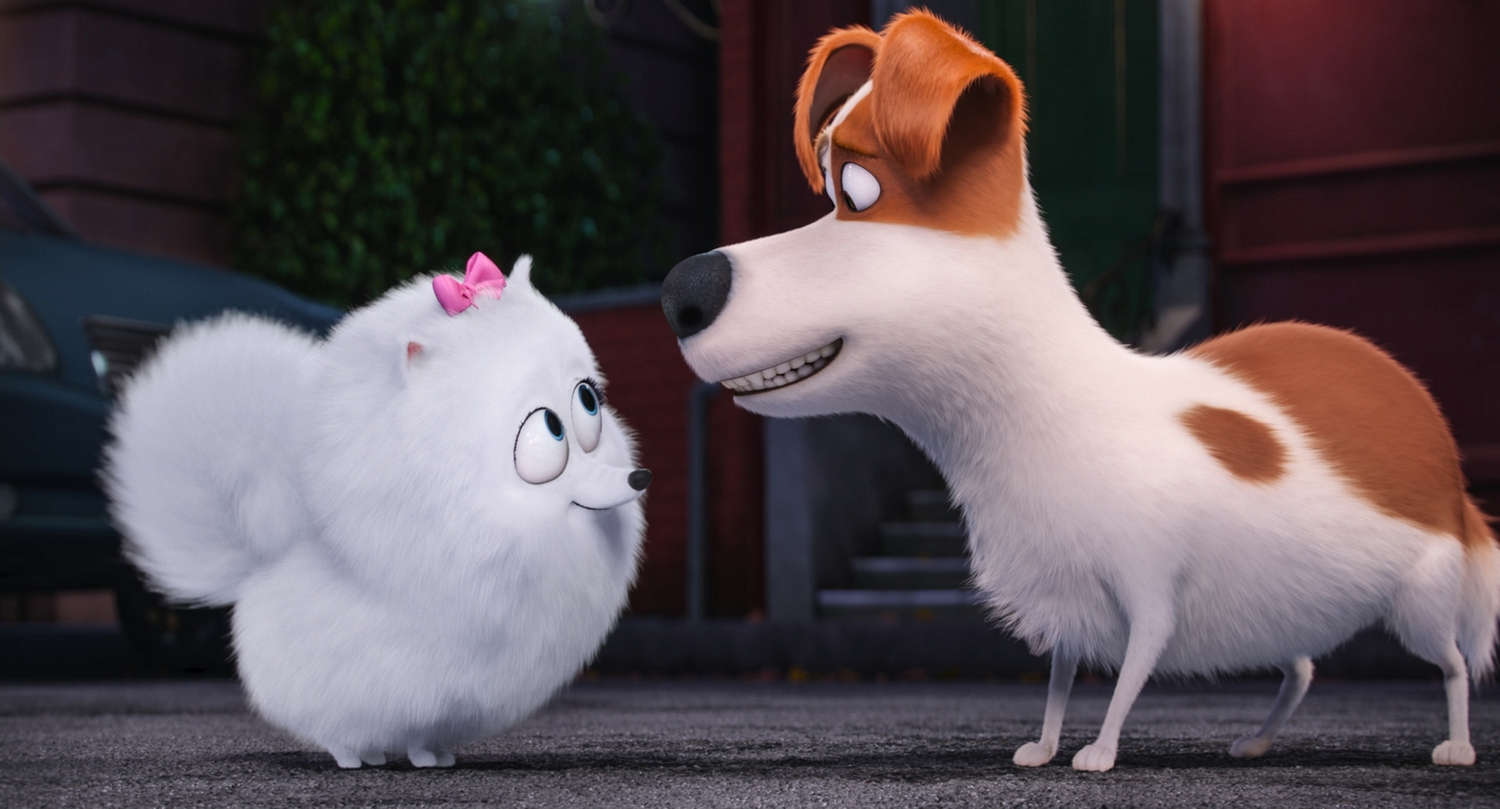 """Gidget (JENNY SLATE) is a naïve-but-gutsy Pomeranian and Max (LOUIS C.K.) is a pampered terrier mix in Illumination Entertainment and Universal Pictures' """"The Secret Life of Pets,"""" a comedy about the lives our pets lead after we leave for work or school each day."""