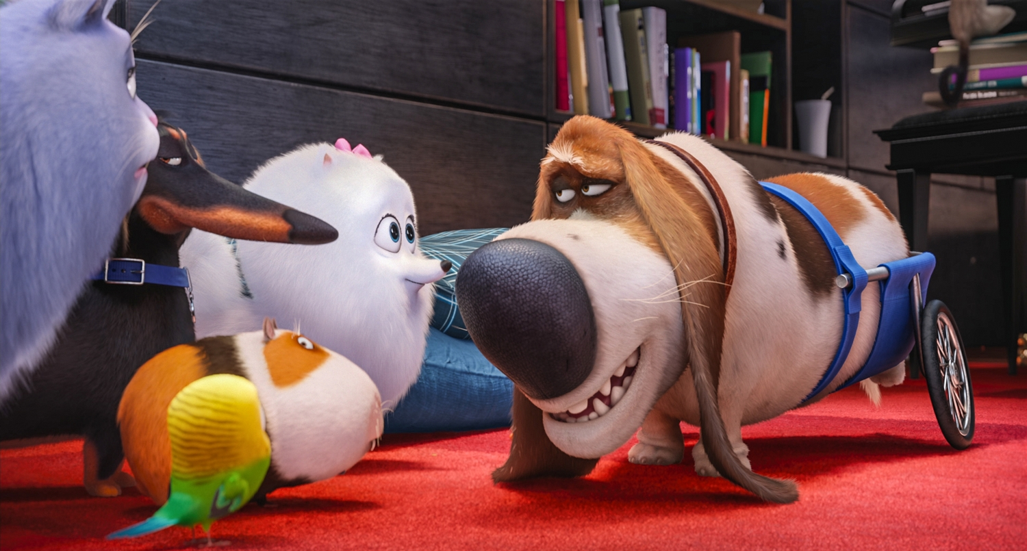 """(L to R) Chloe (LAKE BELL), Buddy (HANNIBAL BURESS), Sweetpea (foreground), Norman (CHRIS RENAUD), Gidget (JENNY SLATE) and Pops (DANA CARVEY) in Illumination Entertainment and Universal Pictures' """"The Secret Life of Pets,"""" a comedy about the lives our pets lead after we leave for work or school each day."""