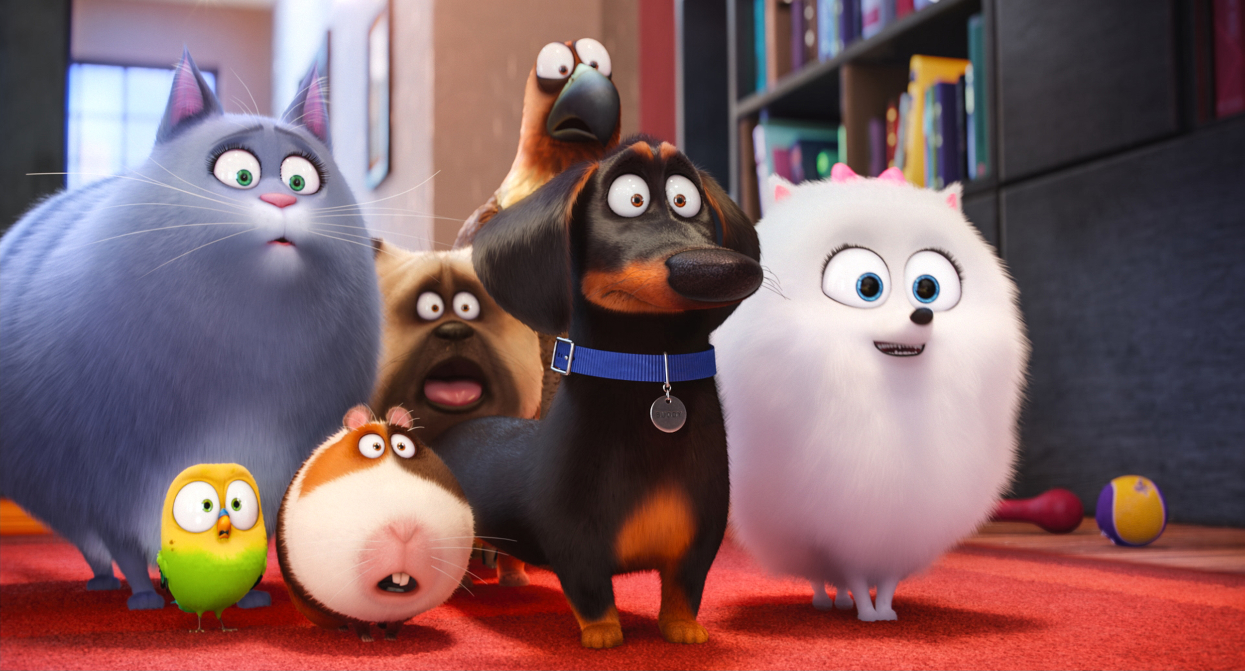 """(L to R) Chloe (LAKE BELL), Sweetpea, Norman (CHRIS RENAUD), Mel (BOBBY MOYNIHAN), Buddy (HANNIBAL BURESS), Tiberius (ALBERT BROOKS) and Gidget (JENNY SLATE) in Illumination Entertainment and Universal Pictures' """"The Secret Life of Pets,"""" a comedy about the lives our pets lead after we leave for work or school each day."""