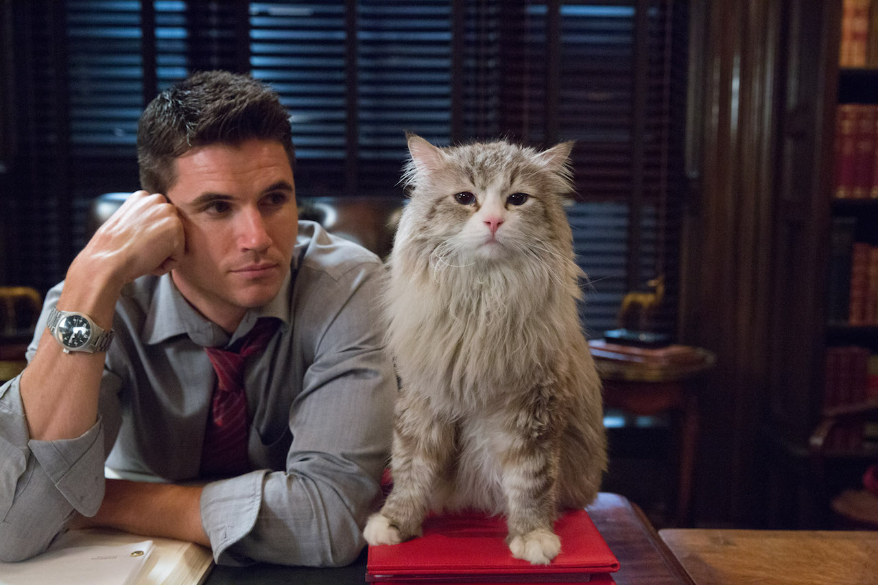 """M118 Robbie Amell and Mr. Fuzzypants tar in EuropaCorp's   """"NINE LIVES"""".Photo Credit: Takashi Seida© 2016 EuropaCorp"""