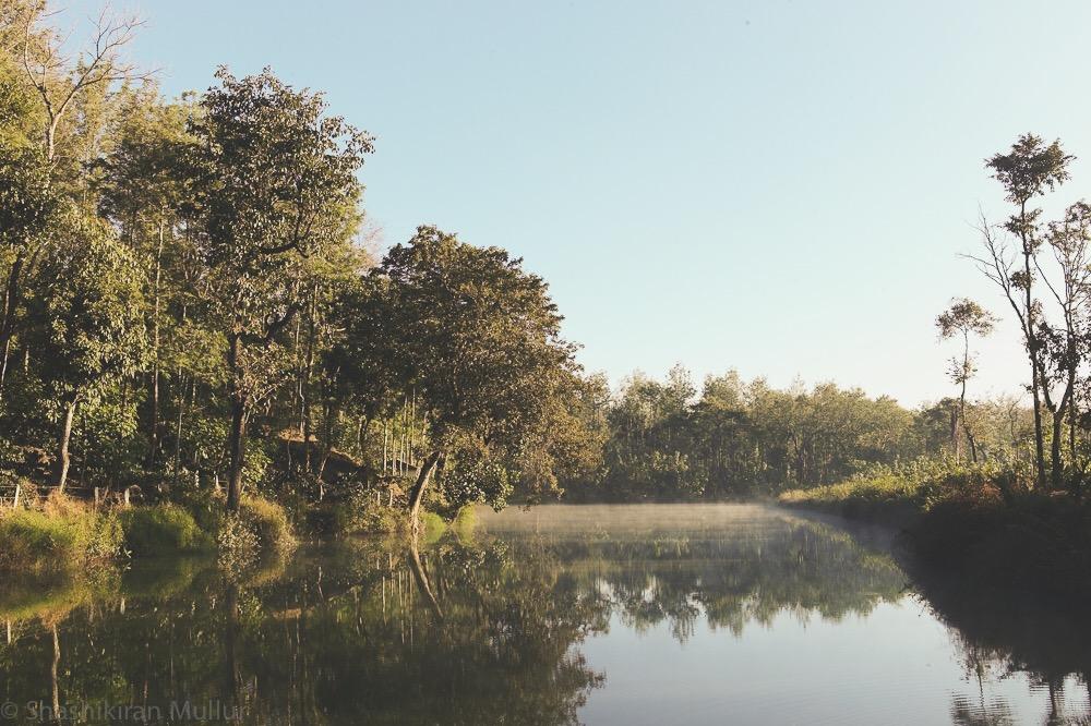 Archive photo: Nandi Thota