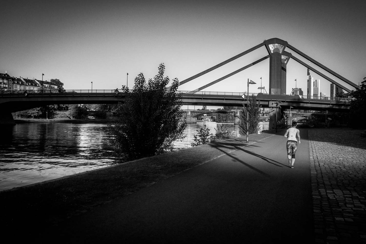 jogging-main-river-frankfurt.jpg