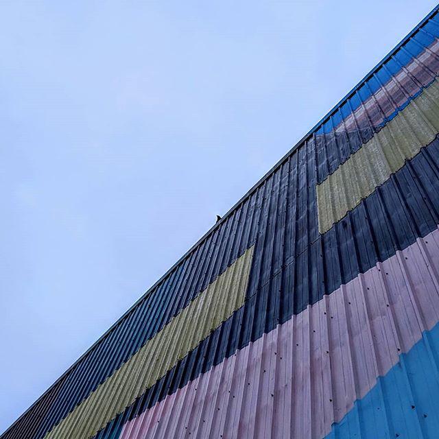 #Seattle #crow #pixel3