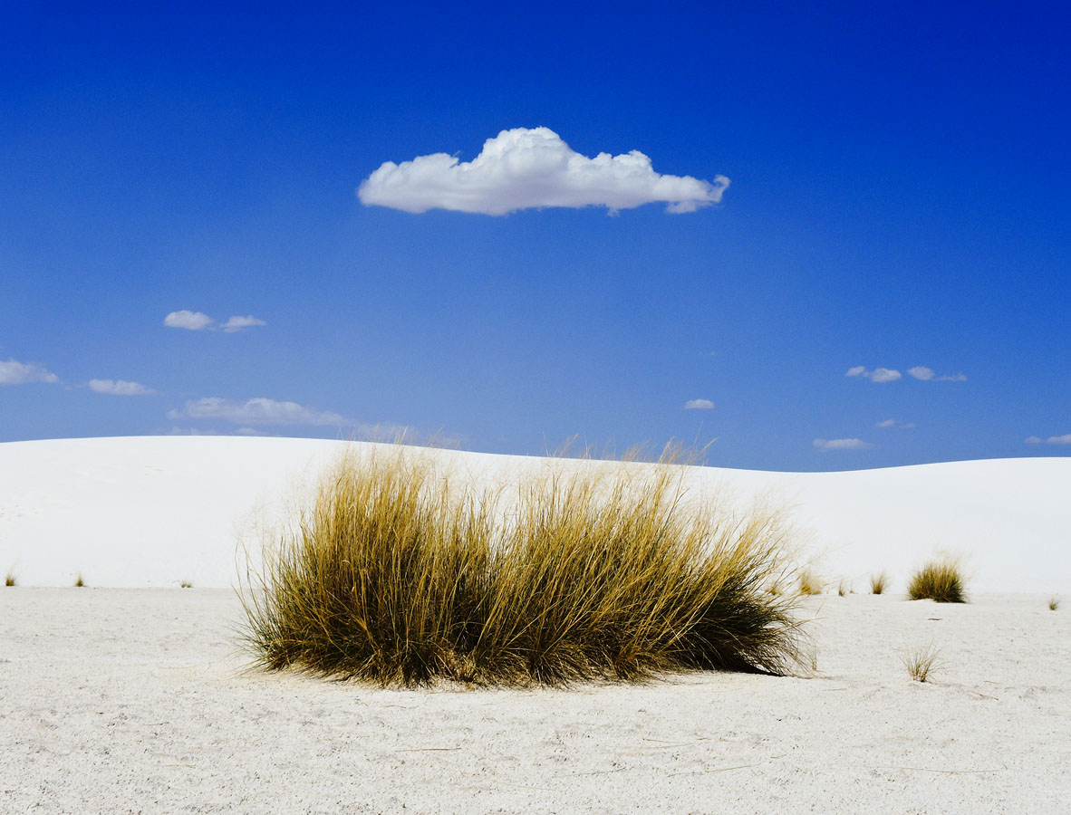 First Contact - White Sands, NM © 2013 Skip Hunt