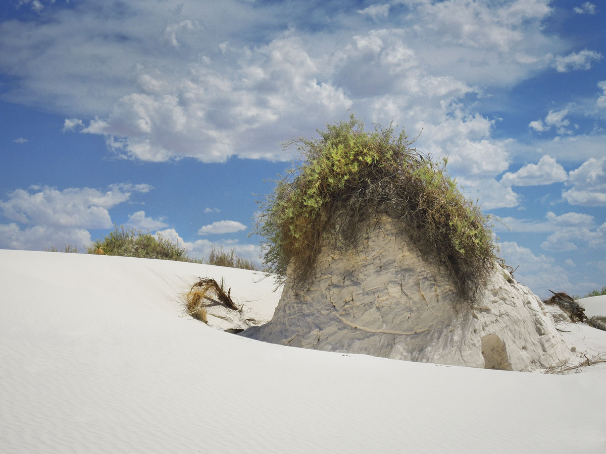 Hair Did - White Sands, New Mexico © 2013 Skip Hunt