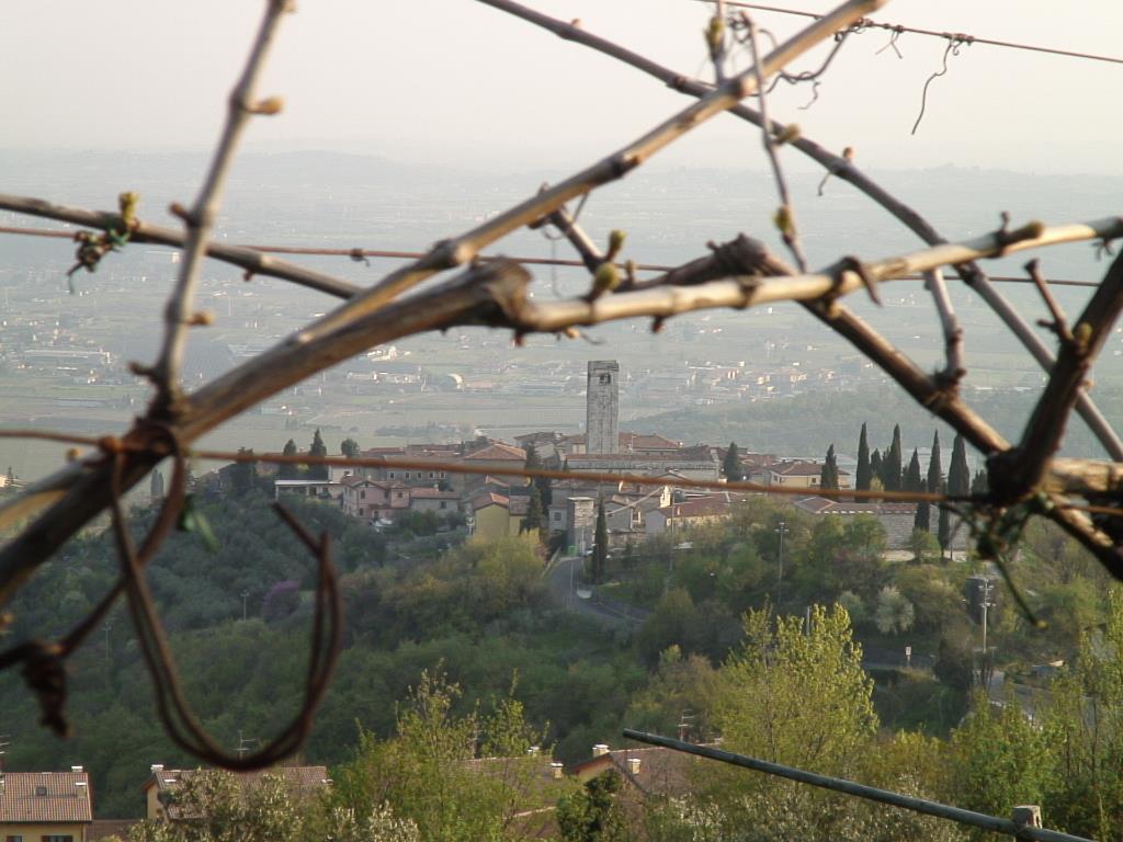 Il   borgo     di San Giorgio di Valpolicella,    tra     le    antiche     cave di pietra e    marmo     e le    vigne