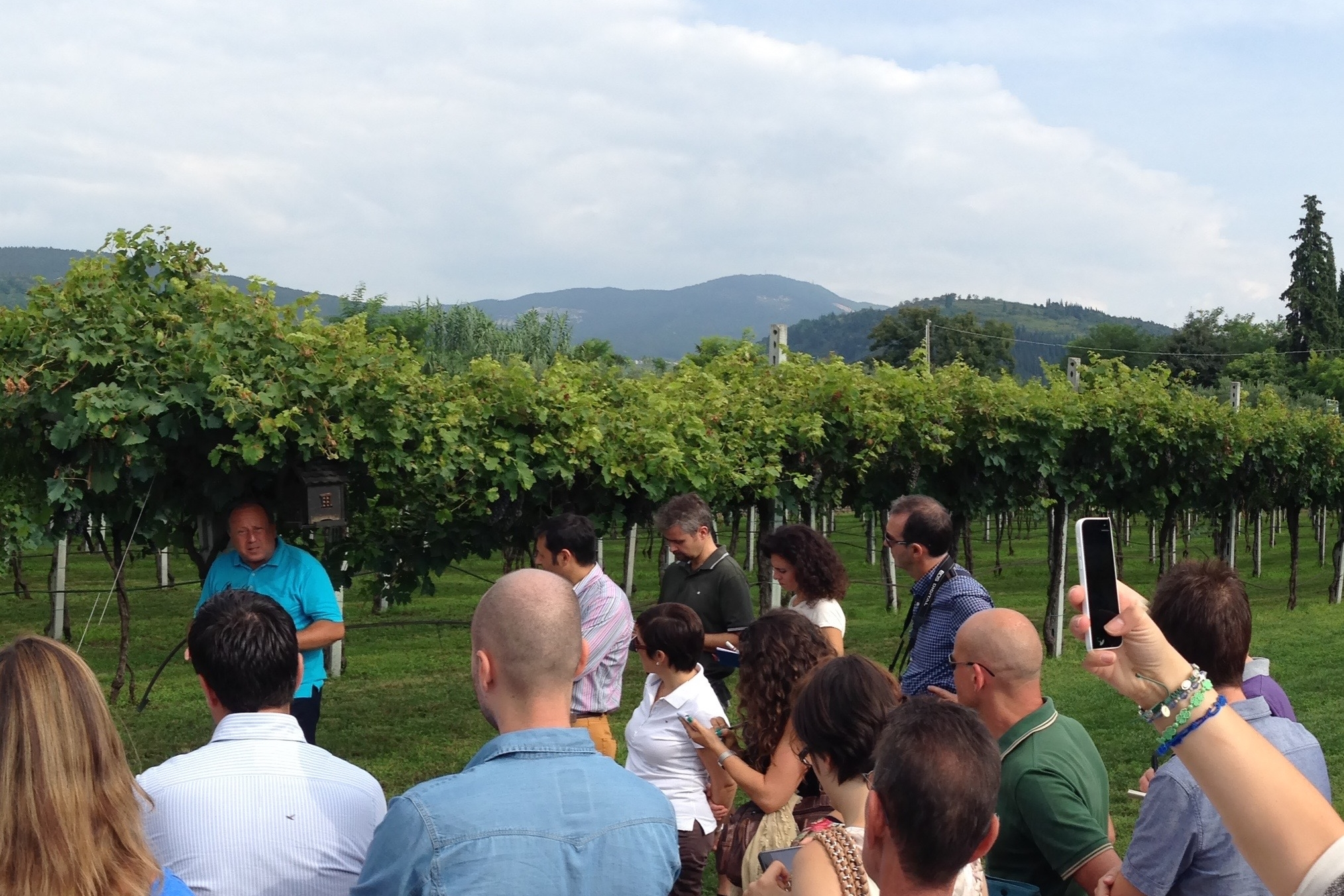 - We help travel agencies & wine tour operators interested to develop tours and visits to Valpolicella wineries, sites and other activities.