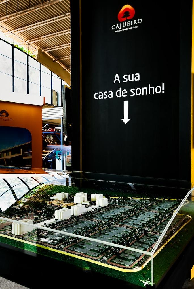 CAJUEIRO_FILDA_2012_006.jpg