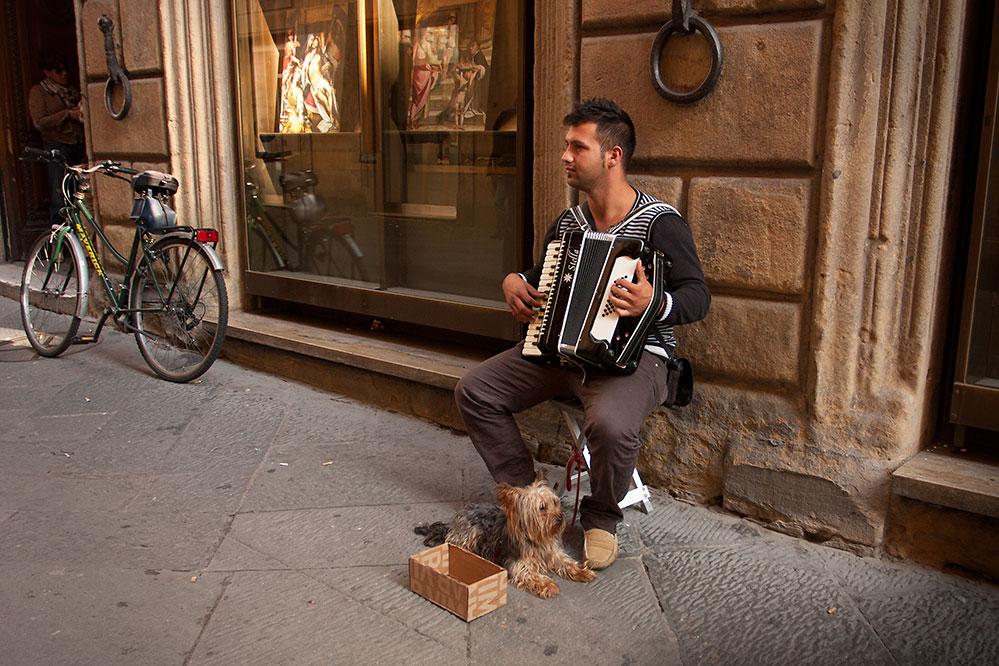 Street musician and dog, Siena