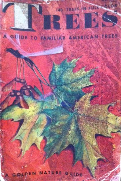 tree_book_cover.jpg