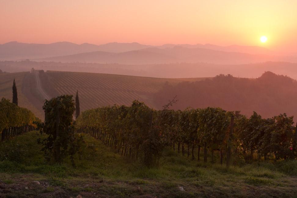 sunrise_chris_corradino.jpg