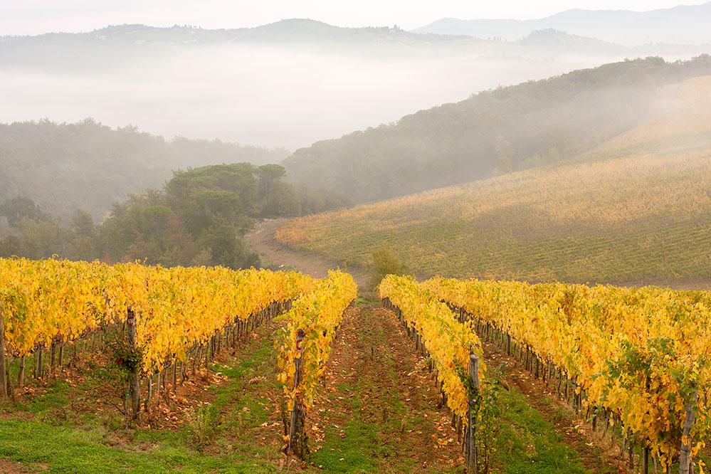 autumn_in_tuscany.jpg