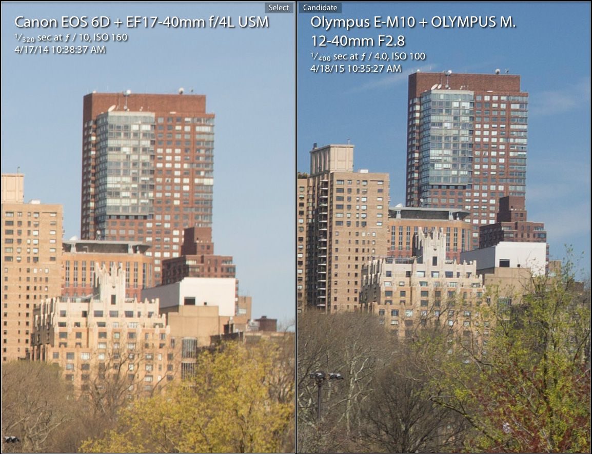 Full Frame vs Micro 4/3 Revisited with Pro Olympus Lens