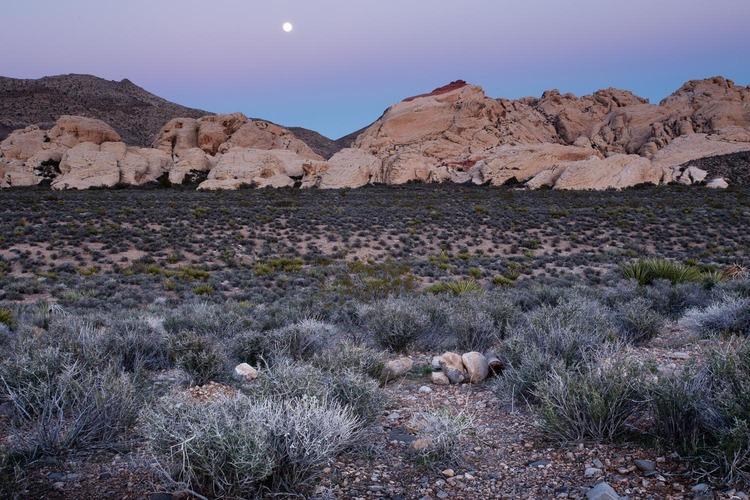 moon_over_red_rock_canyon.jpg