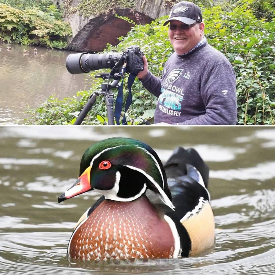 wood-duck.jpg