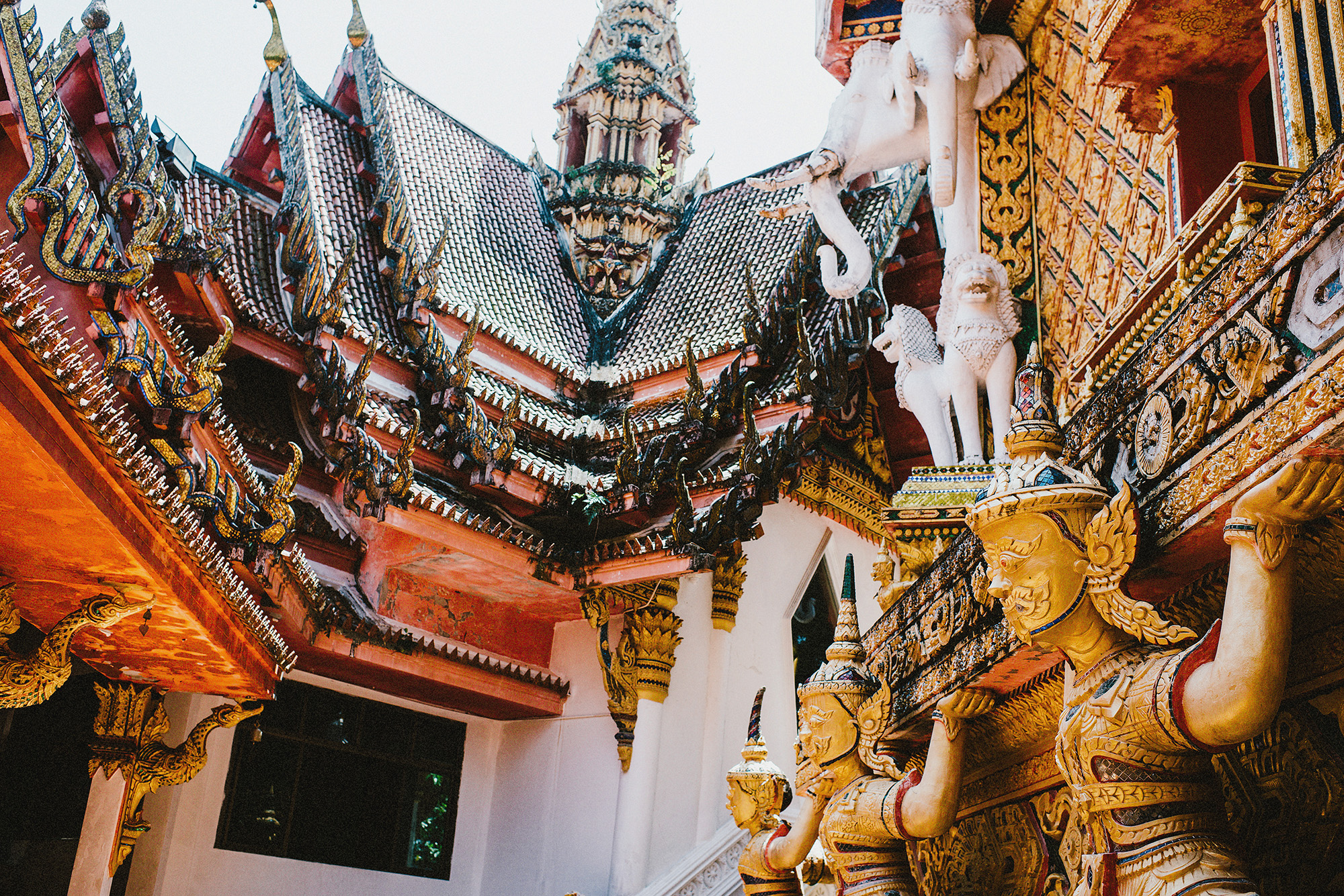 thailand-1541.jpg