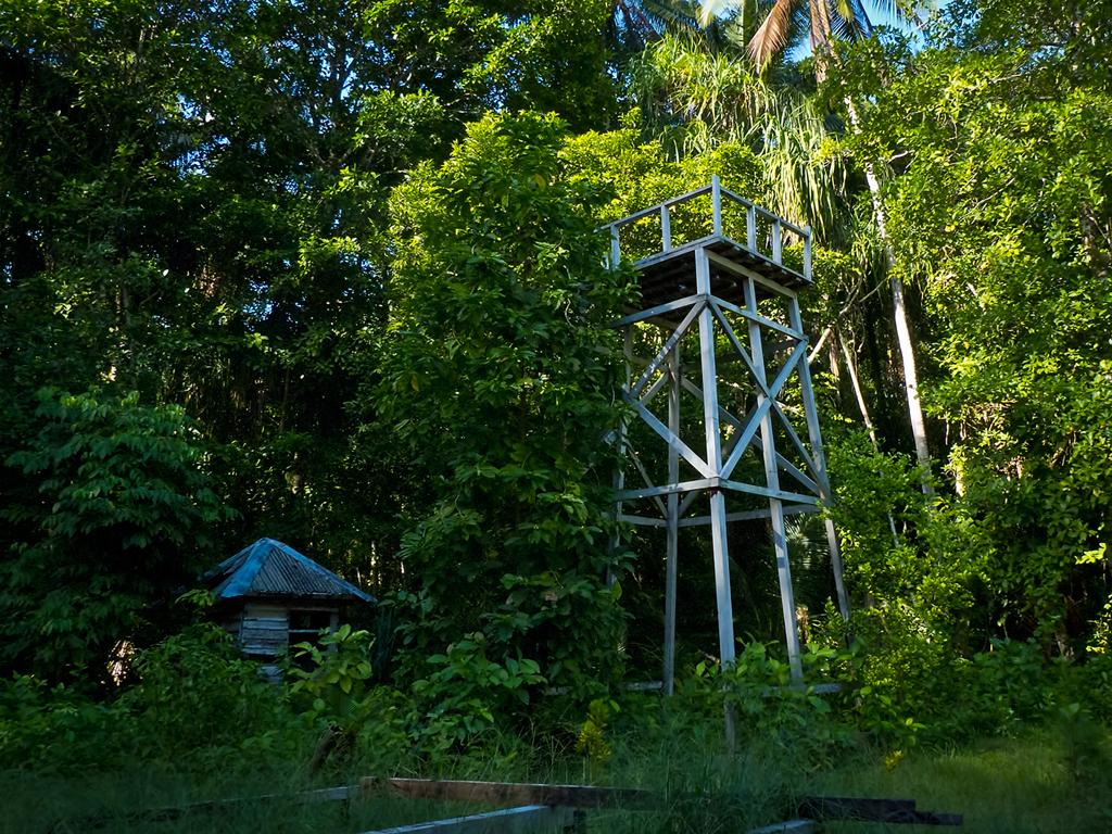Day #18 New Guinea Adventure