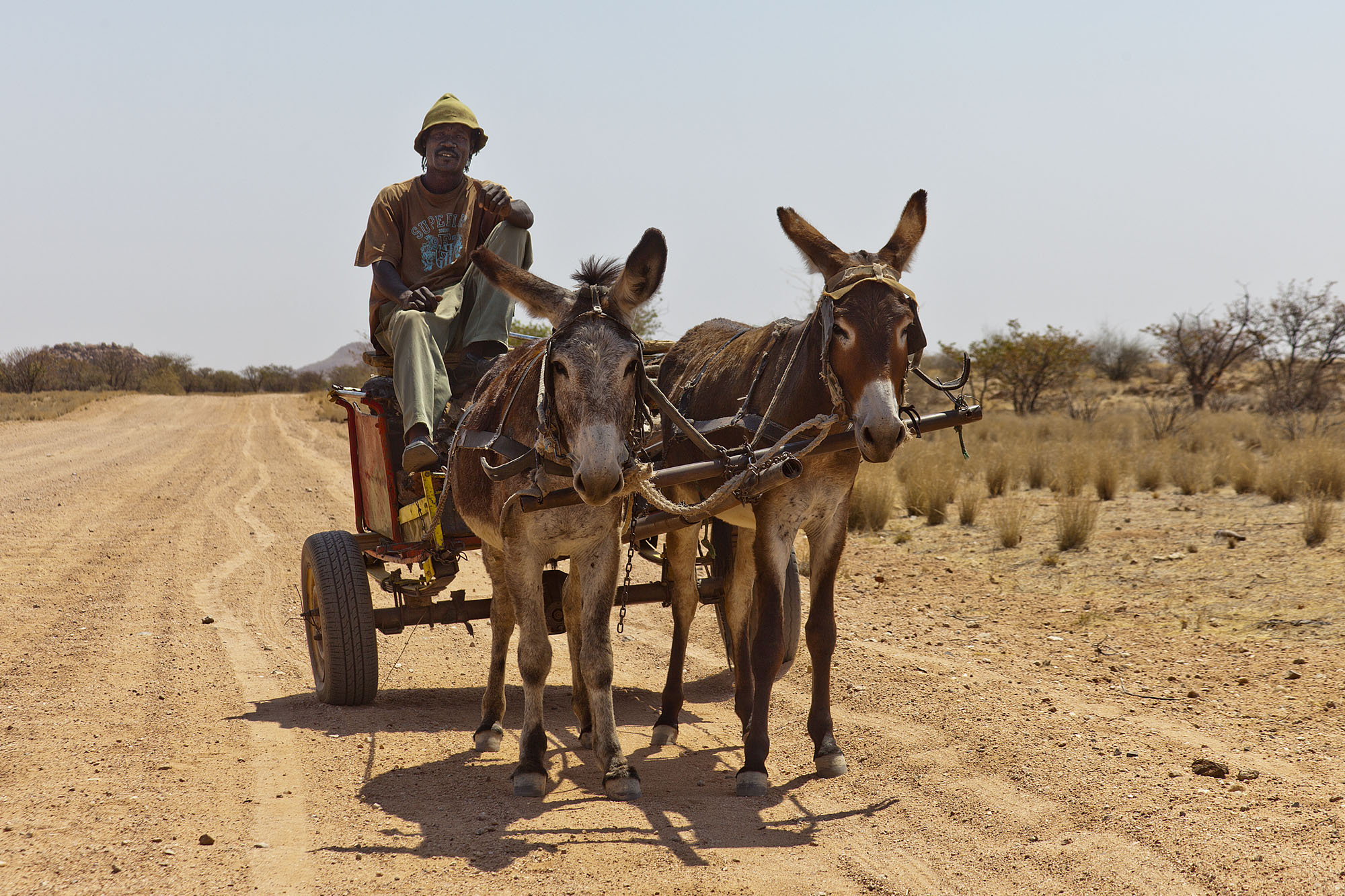 Mike and his donkey cart
