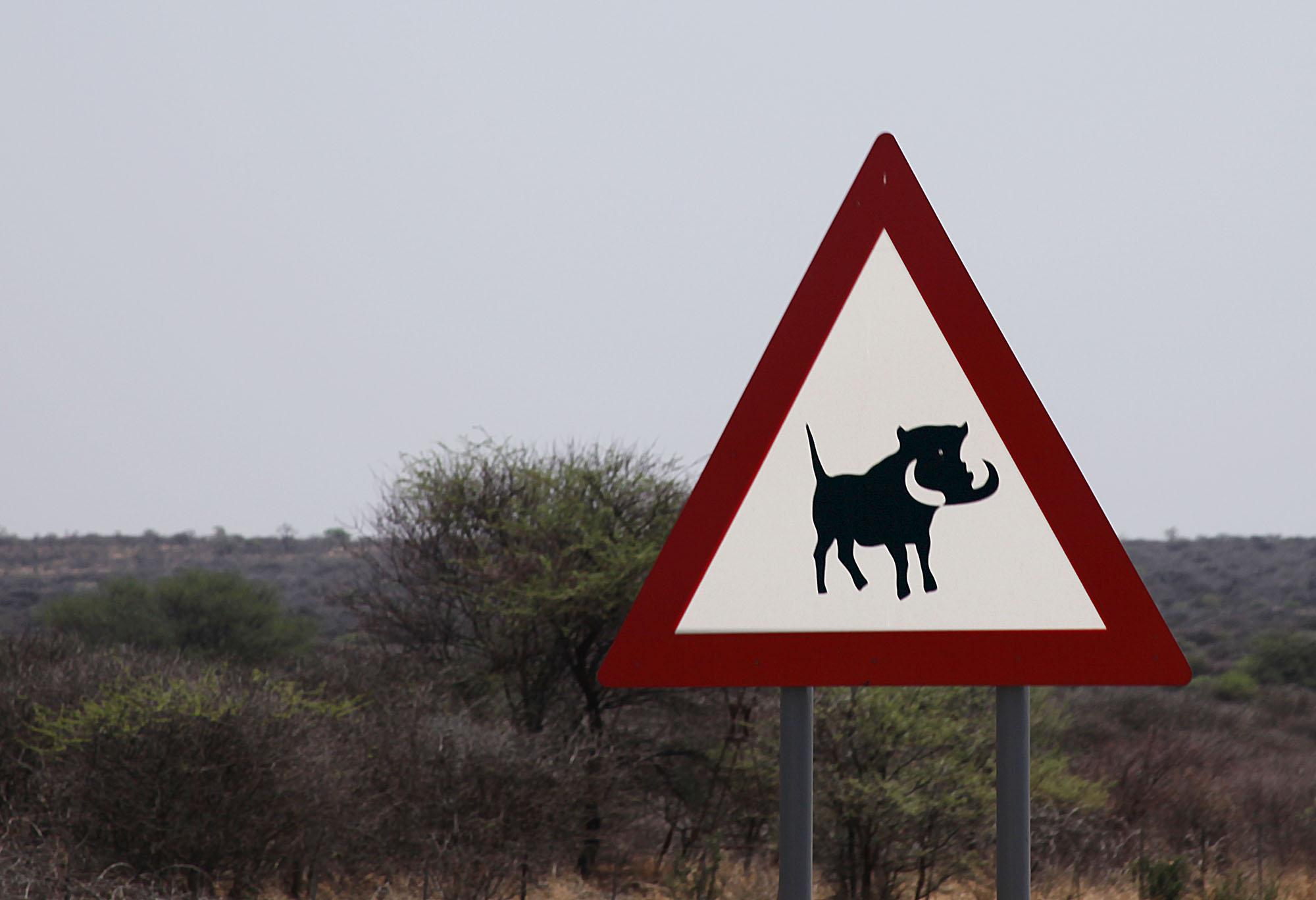 Warthog warning sign