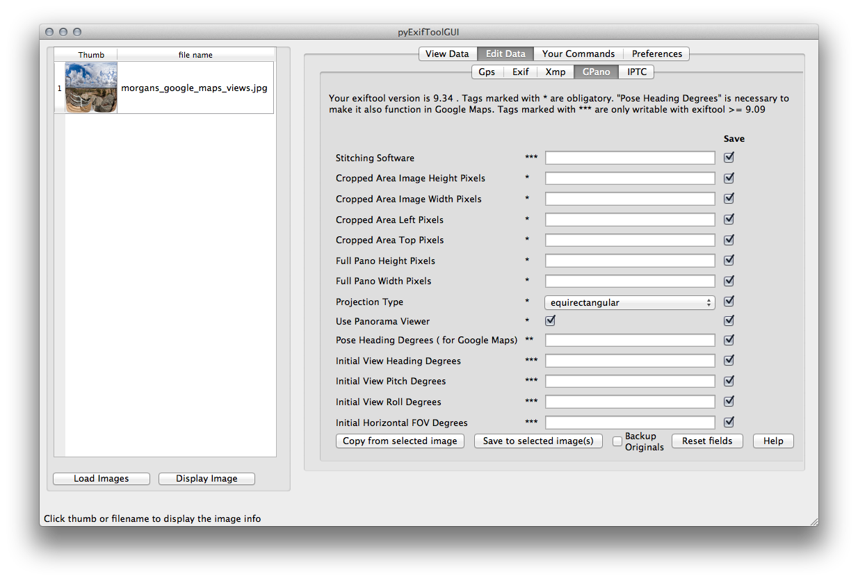 GPano data entry window