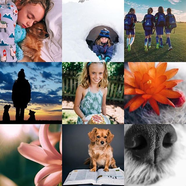 Here are my top nine Instagram photographs of 2018 ranked by likes.  During the last half of this year, I became disenchanted with social media and even the making of photos. The latter breaks my heart. I never thought it could happen. I have some things up my sleeve for the new year that will hopefully help me figure it out.  Here's to fresh starts and open hearts! Cheers! 2019!!! Let's go!