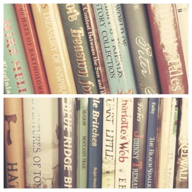 Summer Reading Bookshelves.jpg