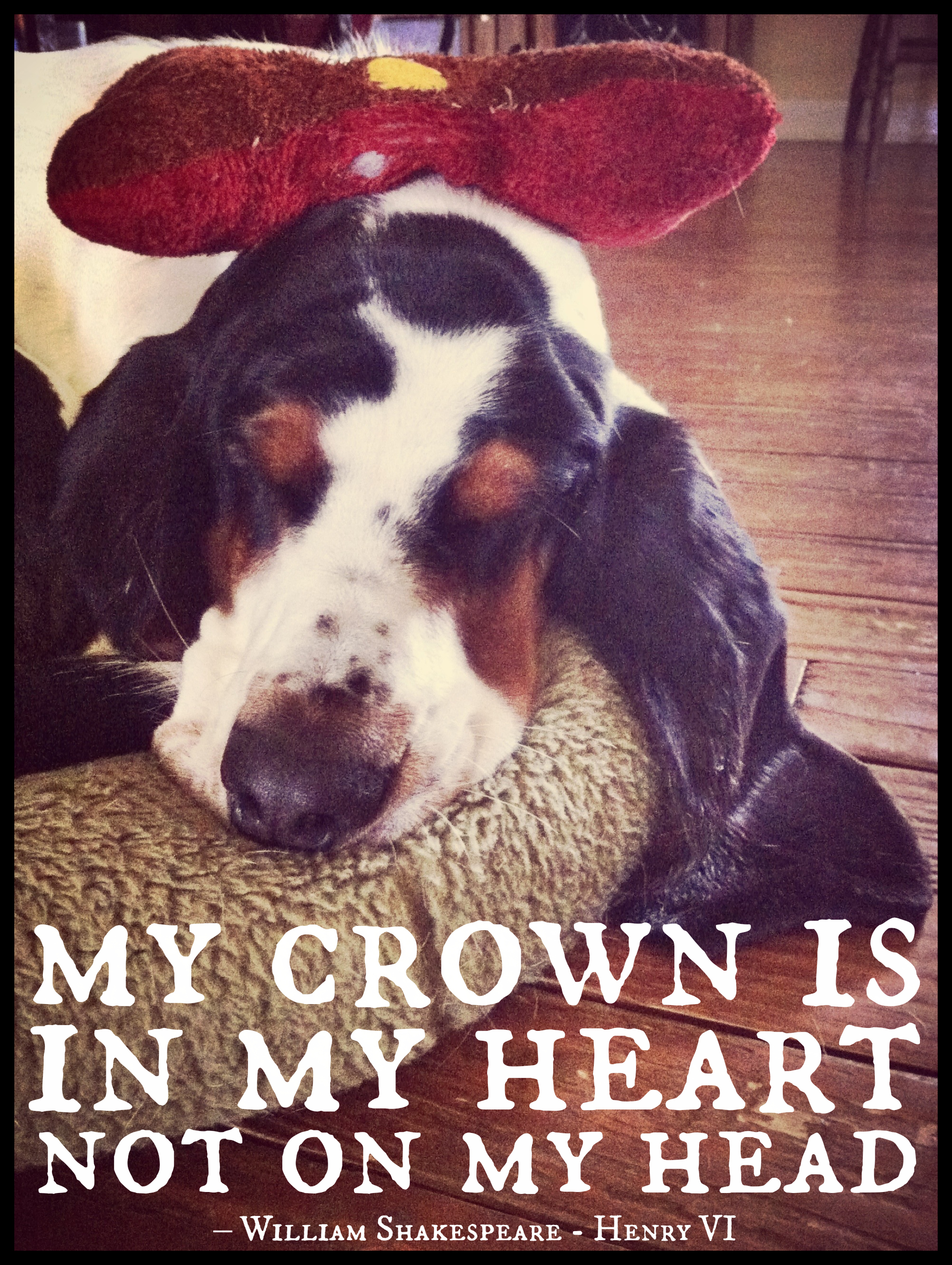 Sportweasel.com Deep Thoughts with Jethro the Basset Hound Crown in my heart Shakespeare Henry VI.jpg