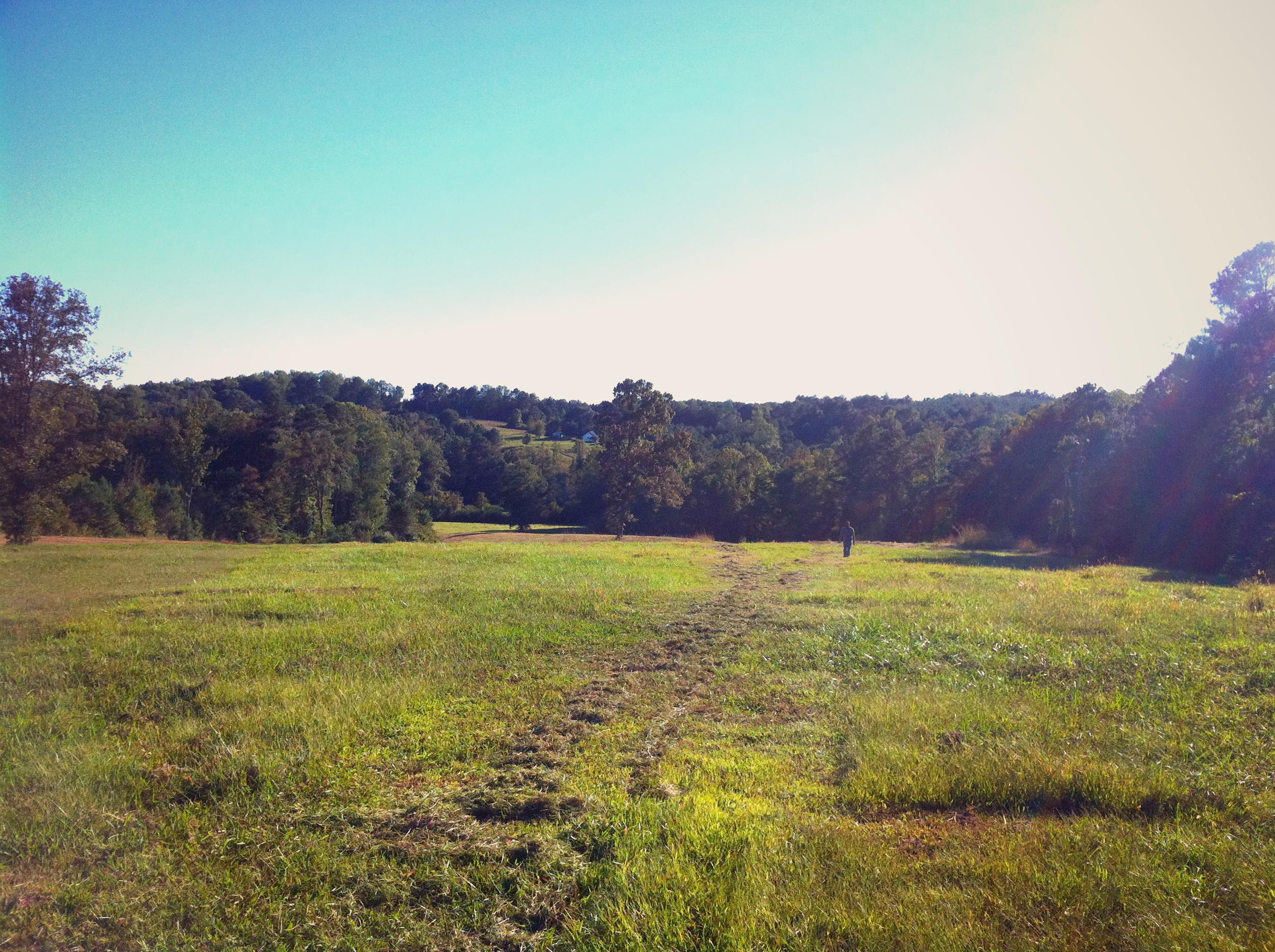 Freshly Mowed Pasture.jpg.jpg