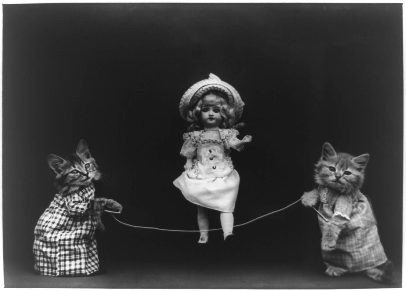 Kittens with a Doll Jumping Rope