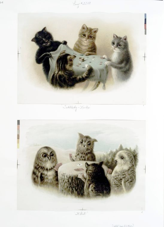 Cats Playing Tiddly-Winks and Owls Playing Whist