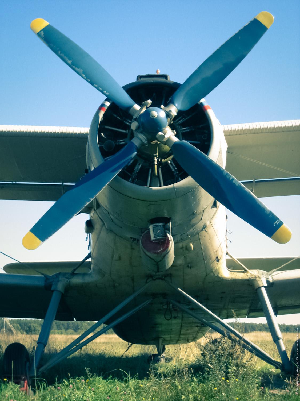 Skydiving - 050910 - 02.jpg