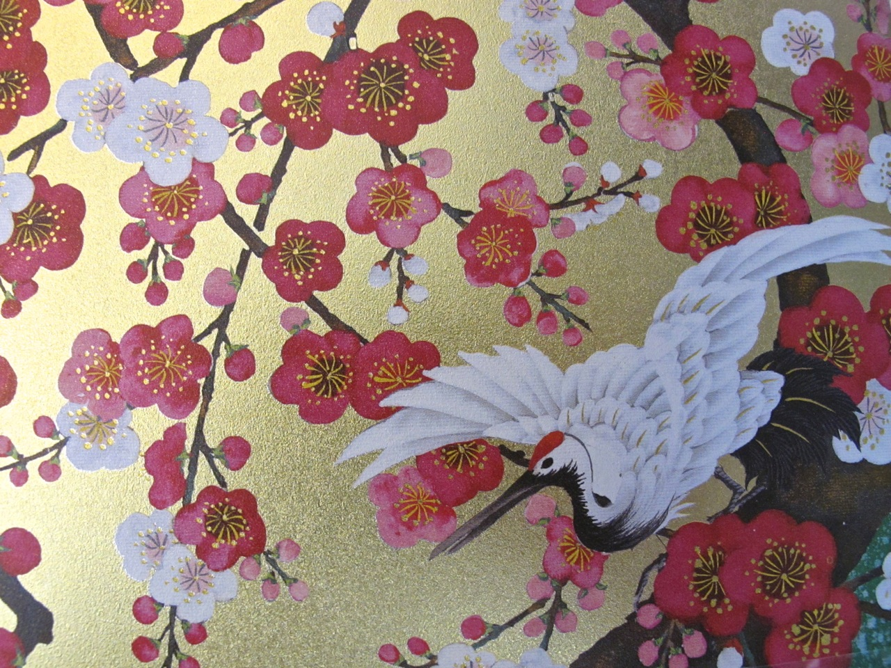 Plum blossoms on greeting card.