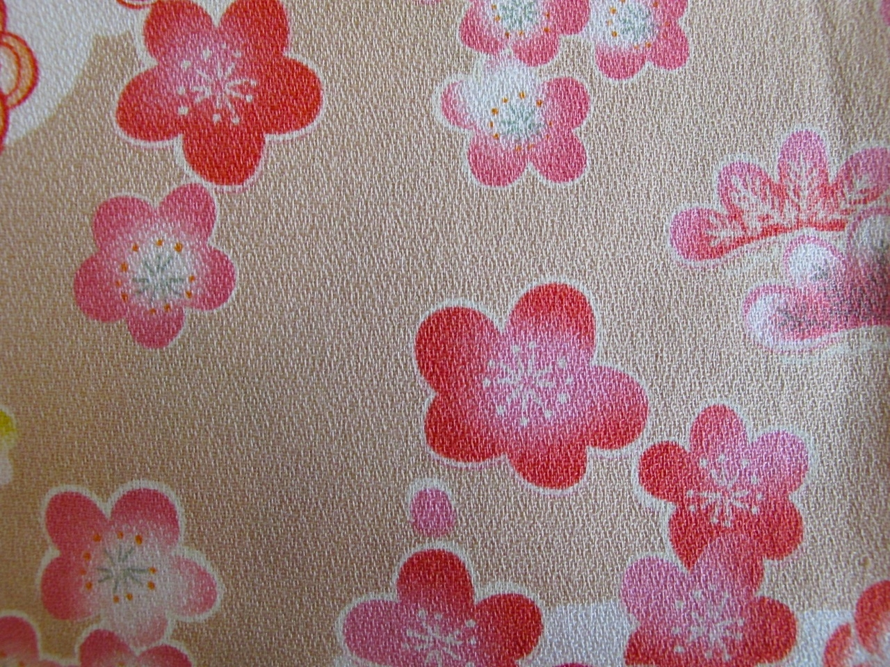 Plum blossoms on fabric.