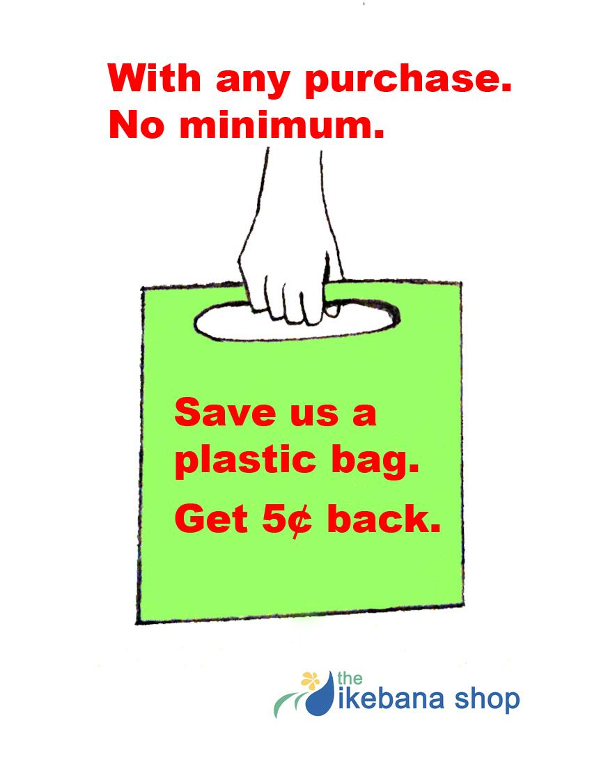no bag discount_edited-2.jpg
