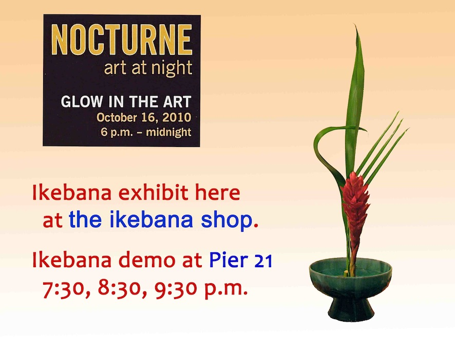 Nocturne 2010. October, 2010 at the ikebana shop.