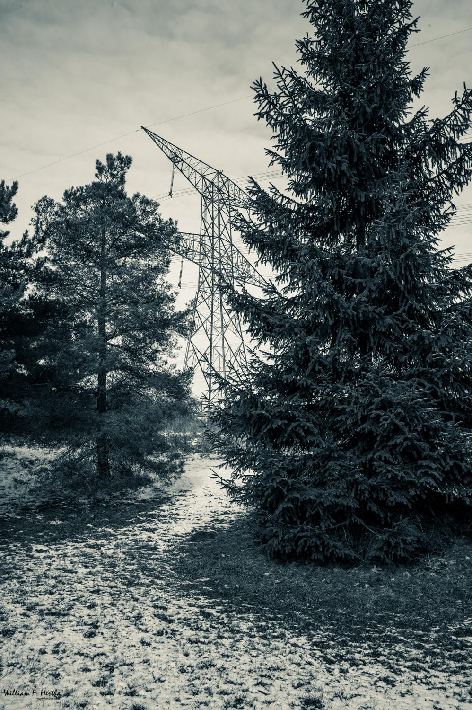 Transmission Tower at Huntington Park