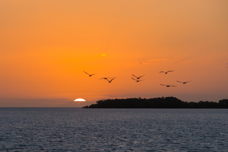 Sunset at Flamingo Florida