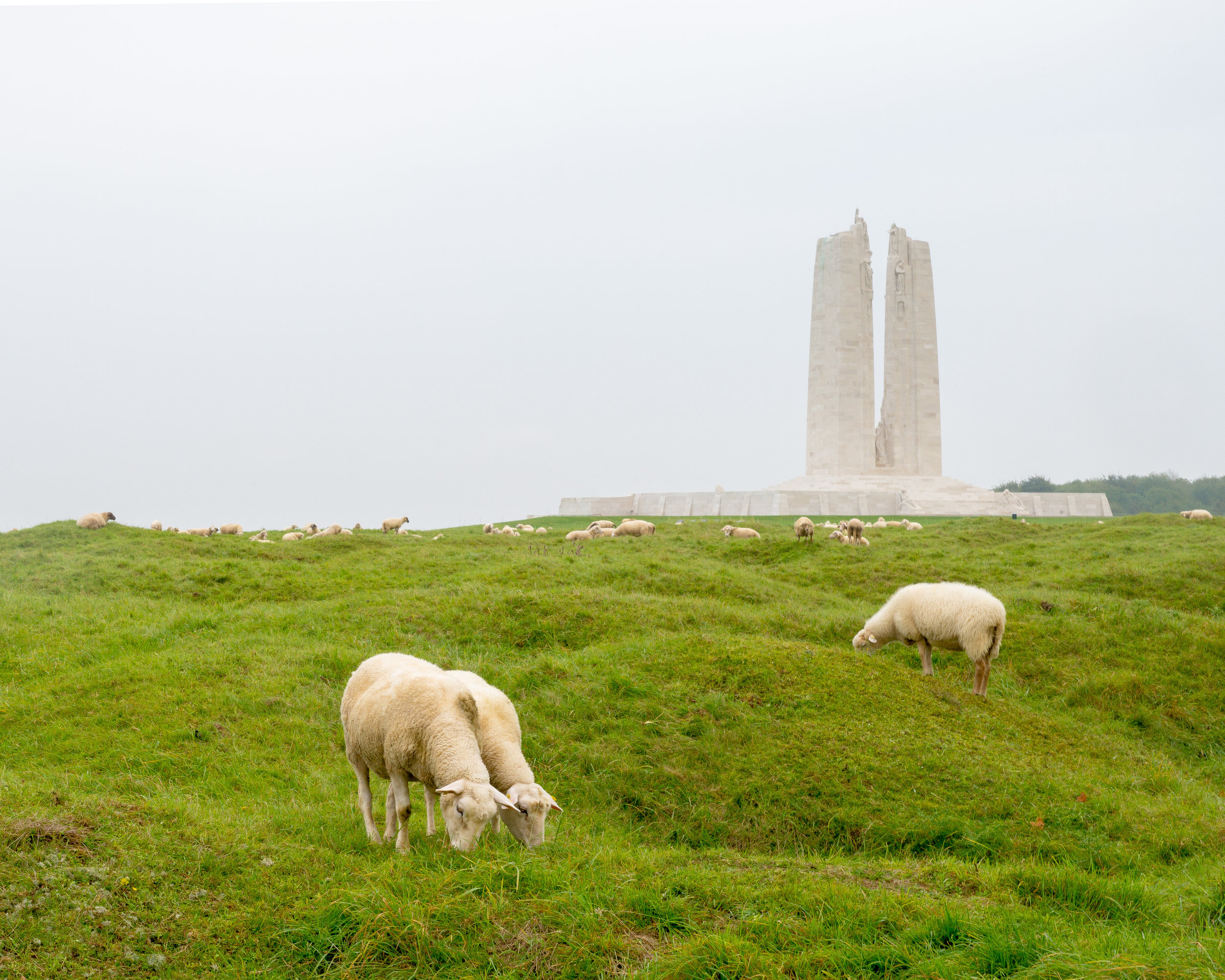 Monument at Vimy, France.   Surrounded by the battlefield, still marked by the bombing, only sheep graze in the uncleared no-mans land.
