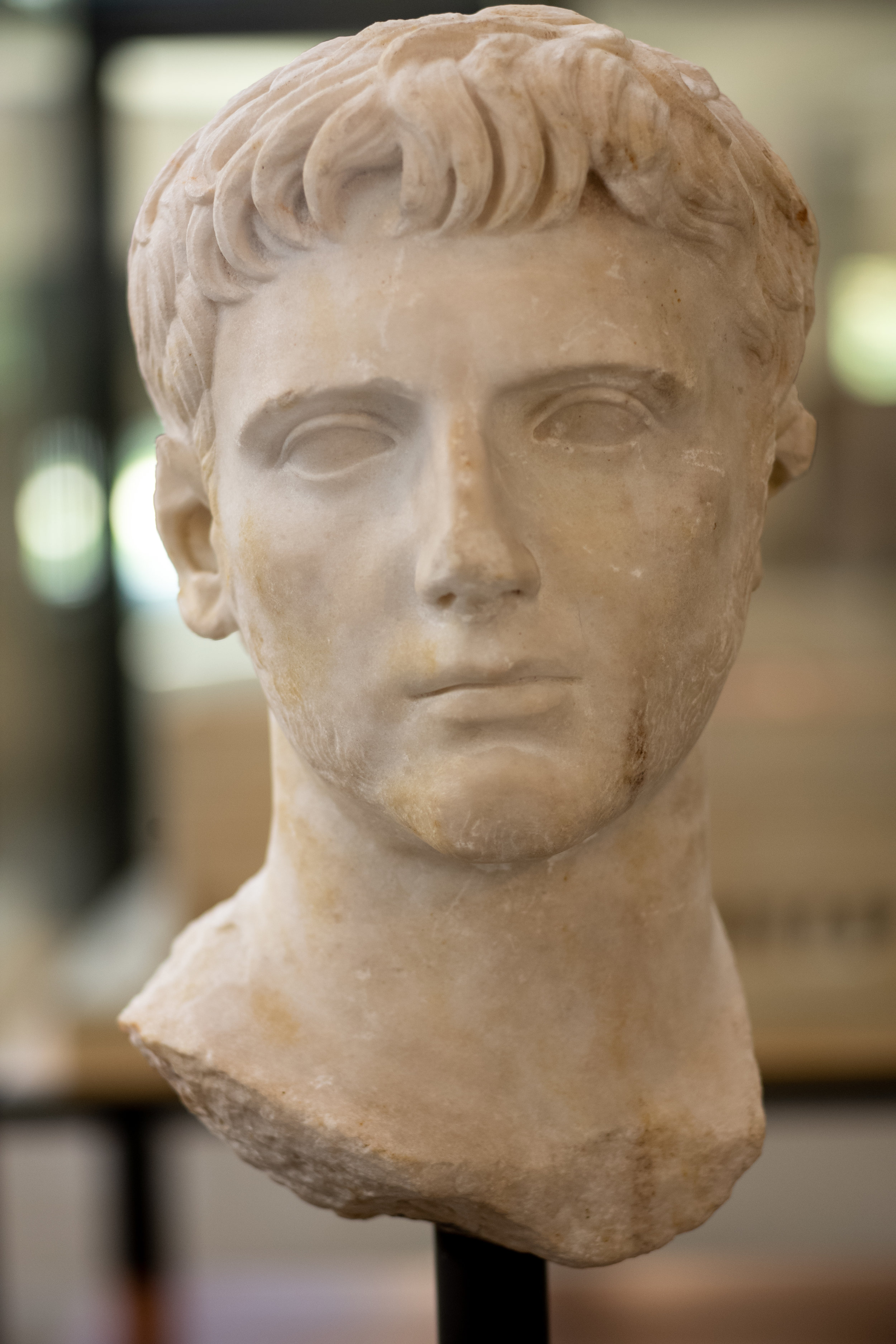 Bust of Gaius Ceasar (20BC - 4 AD)